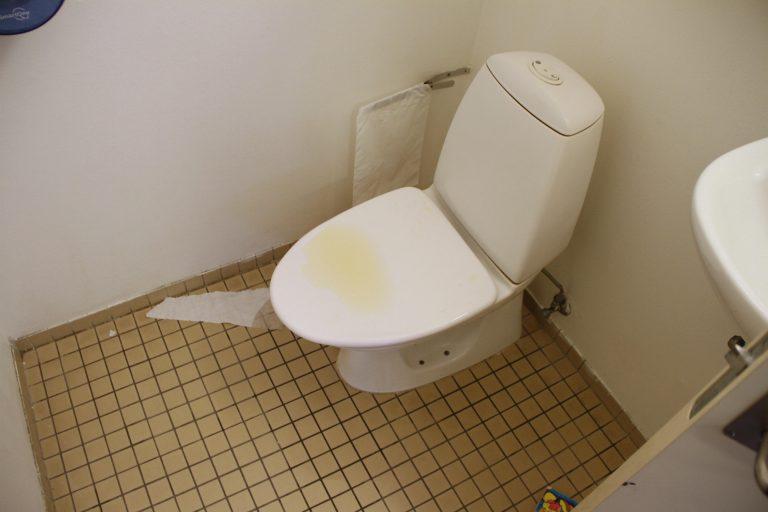 Ulækre skoletoiletter. Problemer med skoletoiletter. Skoletoiletter i folkeskolen skal reddes. Brave