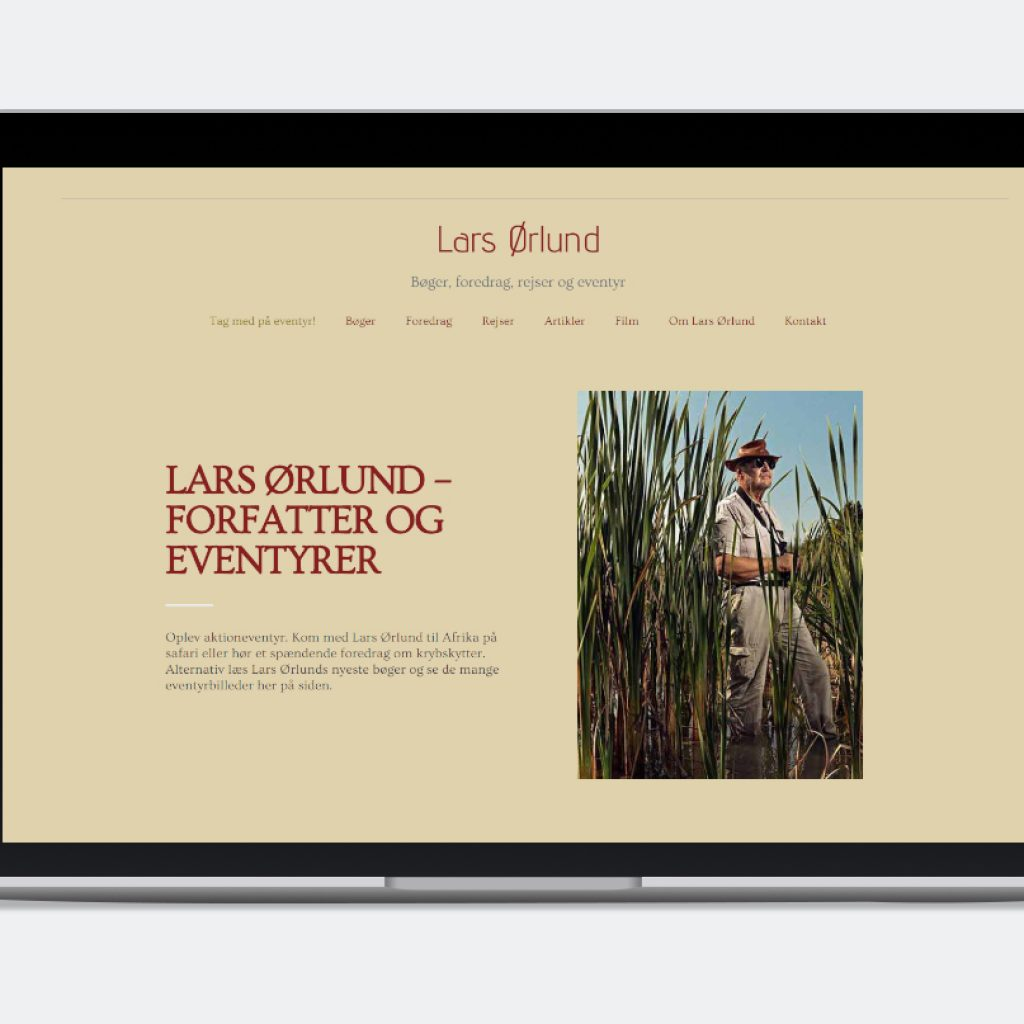Hjemmesidebureau. Ny hjemmeside. SEO og Googleoptimering hos reklamebureau Brave. Hjælp til hjemmesider hos Brave