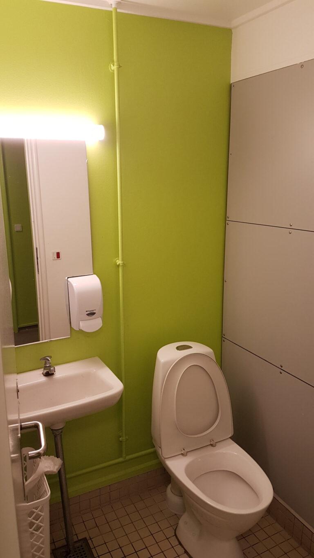Skoletoiletter-let-renovering af Brave. Skoletoiletter i stærk lysegrøn.